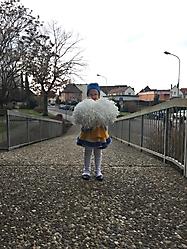 Rathaussturm Hausen