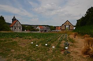 Hessenpark_051 (Large)